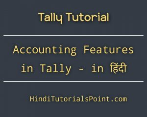 accounting features in tally in hindi